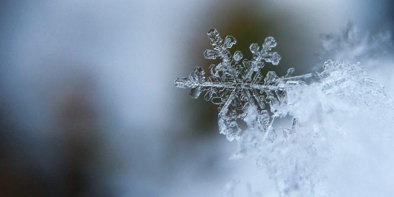 Det är kristallklart: Det blev inte någon vinter